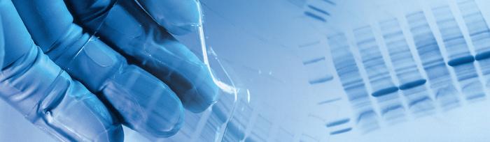 Molecular Biology service master fargo